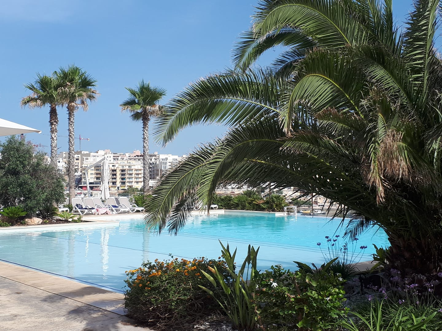 Where To Spend A Sunny Day By The Pool In Malta What S
